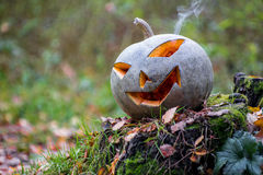 Halloween-Kürbis mit Rauche im Wald Lizenzfreies Stockbild