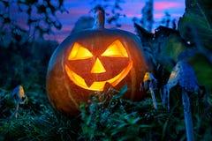 Halloween-Kürbis nachts im Garten Lizenzfreie Stockfotos