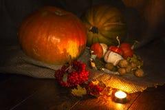 Halloween-Kürbis noch life4 stockfoto