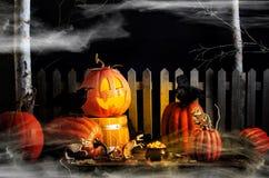 Halloween-Kürbis-Raben und Mäuse lizenzfreies stockfoto