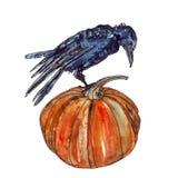 Halloween-Kürbis und -krähe im Aquarell Lizenzfreies Stockbild