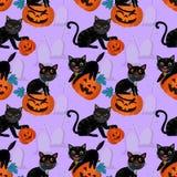 Halloween-Kürbis und schwarze Katze lizenzfreie abbildung