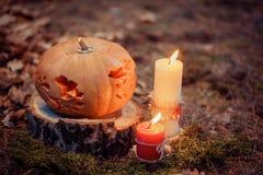 Halloween-Kürbisdekoration Stockfoto