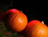 Halloween-Kürbise Lizenzfreie Stockfotos