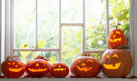 Halloween-Kürbise auf Fenster Stockfotografie