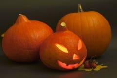 Halloween-Kürbise auf schwarzem Hintergrund Lizenzfreie Stockfotografie