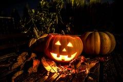 Halloween-Kürbise in der Dunkelheit Stockfotografie