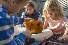 Halloween-Kürbise, die im Garten schnitzen Stockfotos