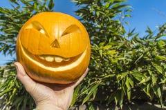Halloween-Kürbise, die im Garten schnitzen Lizenzfreie Stockfotos