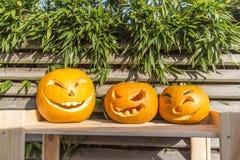 Halloween-Kürbise, die im Garten schnitzen Lizenzfreie Stockfotografie