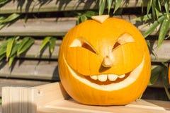 Halloween-Kürbise, die im Garten schnitzen Stockbilder