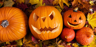 Halloween-Kürbise, geschnitzte Steckfassung-Olaterne im Fall verlässt Lizenzfreies Stockbild
