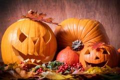 Halloween-Kürbise, geschnitzte Steckfassung-Olaterne im Fall verlässt Stockfotografie