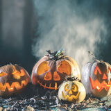 Halloween-Kürbise am hölzernen Hintergrund Geschnitzte furchtsame Gesichter des Kürbises Lizenzfreie Stockfotografie