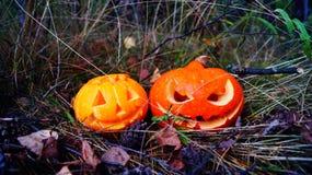 Halloween-Kürbise im Park Lizenzfreie Stockfotografie