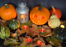 Halloween-Kürbise Laterne für Halloween-Feiertagstradition Lizenzfreies Stockbild