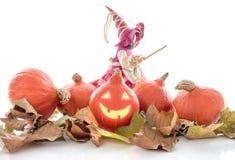 Halloween-Kürbise und eine Hexe auf Herbstlaub Lizenzfreie Stockfotografie