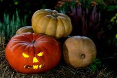 Halloween-Kürbislaternen-Kopfsteckfassung, brennende Augen auf einem Herbsthintergrund Stockfotos