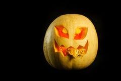 Halloween - Kürbissteckfassung-olaterne auf schwarzem Hintergrund Stockfotografie