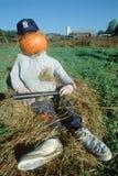 Halloween-Karakter kleedde zich als New York Yankee, Route 100, Vermont Royalty-vrije Stock Afbeelding