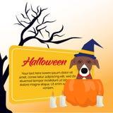 Halloween karty zaproszenie z bania psem obraz stock