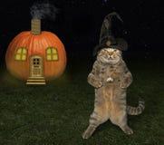 Halloween-kat en pompoenhuis stock fotografie