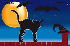 Halloween Kater New Stock Photography