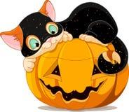 Halloween-katje stock illustratie