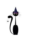 Halloween-Katze Stockfotografie