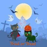 Halloween-Katze mit Vollmond auf blauem Hintergrund vektor abbildung