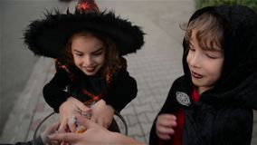 Halloween, Kids Want Halloween Candy, Children wearing witch costumes with hats, Kids trick or treat. Halloween, Kids Want Halloween Candy, Children wearing stock video footage