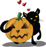 Halloween Kitten Stock Photo