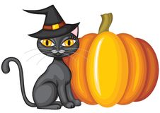 Halloween kitty Stock Photos