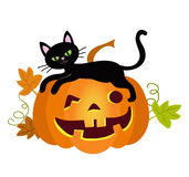Halloween kitty cat and funny pumpkins. Vector illustration. Stock Photo