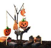 Halloween-koekjes die die op een boom hangen op een witte backgrou wordt geïsoleerd Royalty-vrije Stock Fotografie