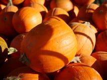 Halloween kommt! Stockfoto