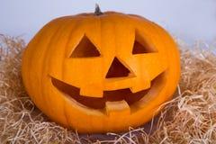 Halloween-Konzept - Kürbis Jack-O-Laterne mit glücklichem Gesicht Stockfoto