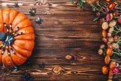 Halloween-Konzept mit neuen Kürbisen, Spinnen und Wanzen mit Blumen Süßes sonst gibt's Saures Ansicht von oben Stockbild