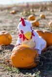 Halloween-Kostüme Lizenzfreie Stockbilder
