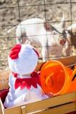 Halloween-Kostüme Stockfotos