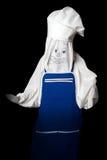 Halloween. kucbarski duch Obrazy Royalty Free