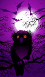 Halloween landscape. With owl and moon Stock Photography