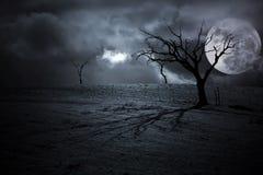 Halloween Landscape Stock Image