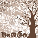 Halloween landscape, pumpkins, tree and spider Stock Photos