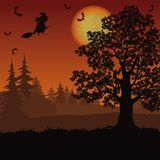 Halloween landscape with witch and trees Stock Photo