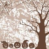 Halloween-Landschaft, -kürbise, -baum und -spinne Stockfotos