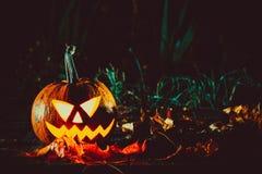 Halloween-lantaarn van de pompoenen de hoofdhefboom Stock Afbeelding