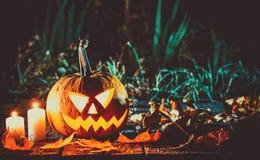Halloween-lantaarn van de pompoenen de hoofdhefboom Stock Afbeeldingen