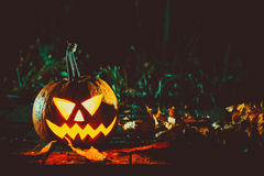 Halloween-lantaarn van de pompoenen de hoofdhefboom Stock Foto's