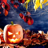 Halloween lantern pumpkin  in dark sky clouds Stock Images